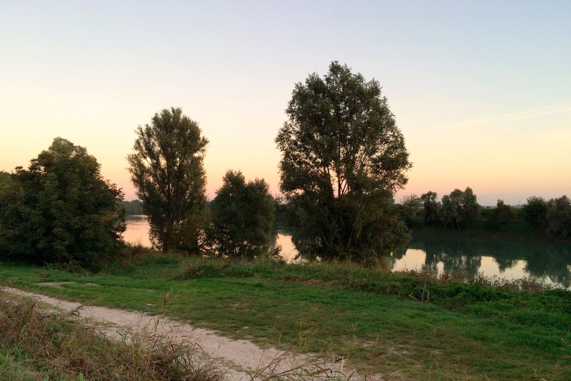 Anguillara Veneta_Fiume Adige a Borgoforte