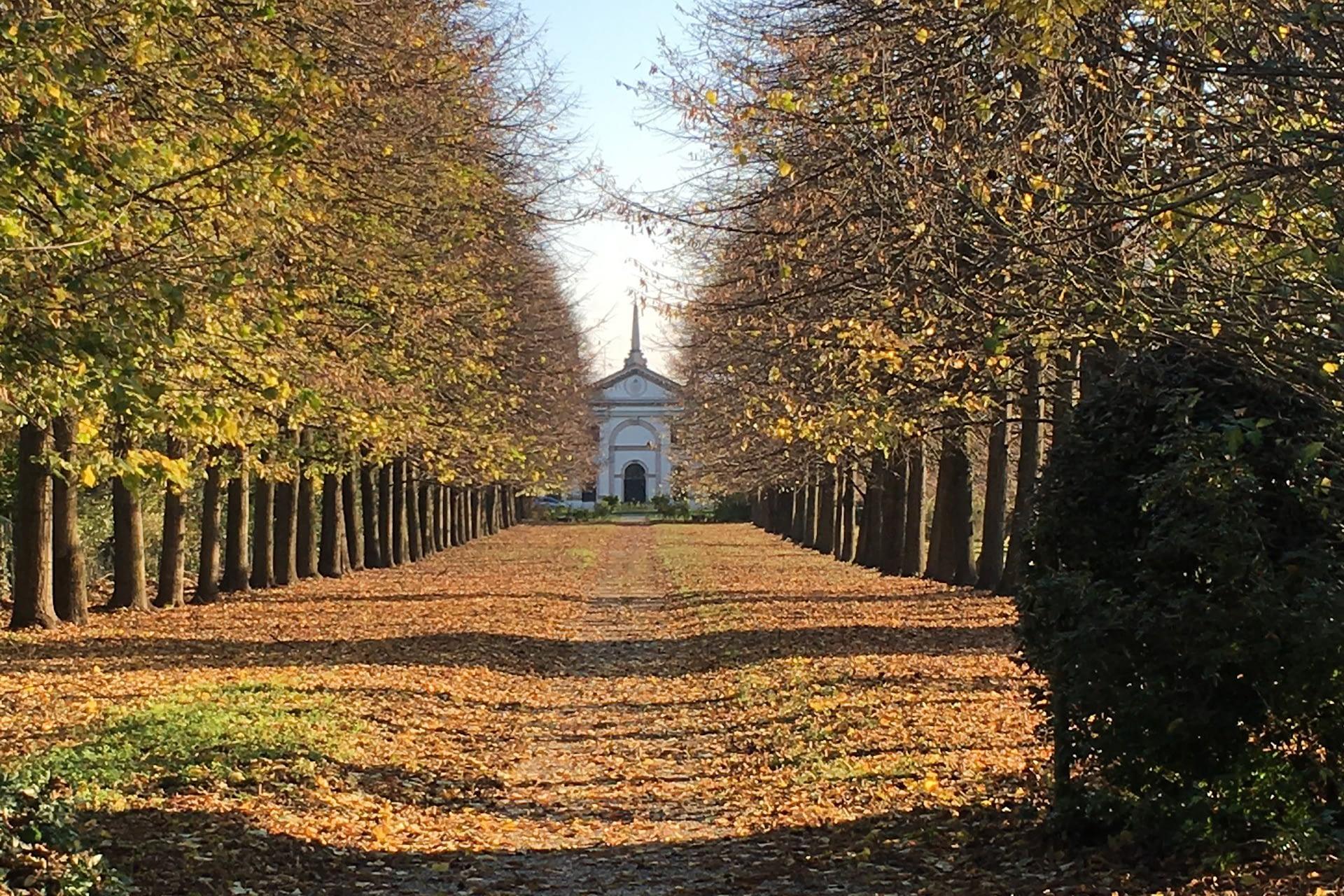San Pietro Viminario_Viale di Villa Giustiniani