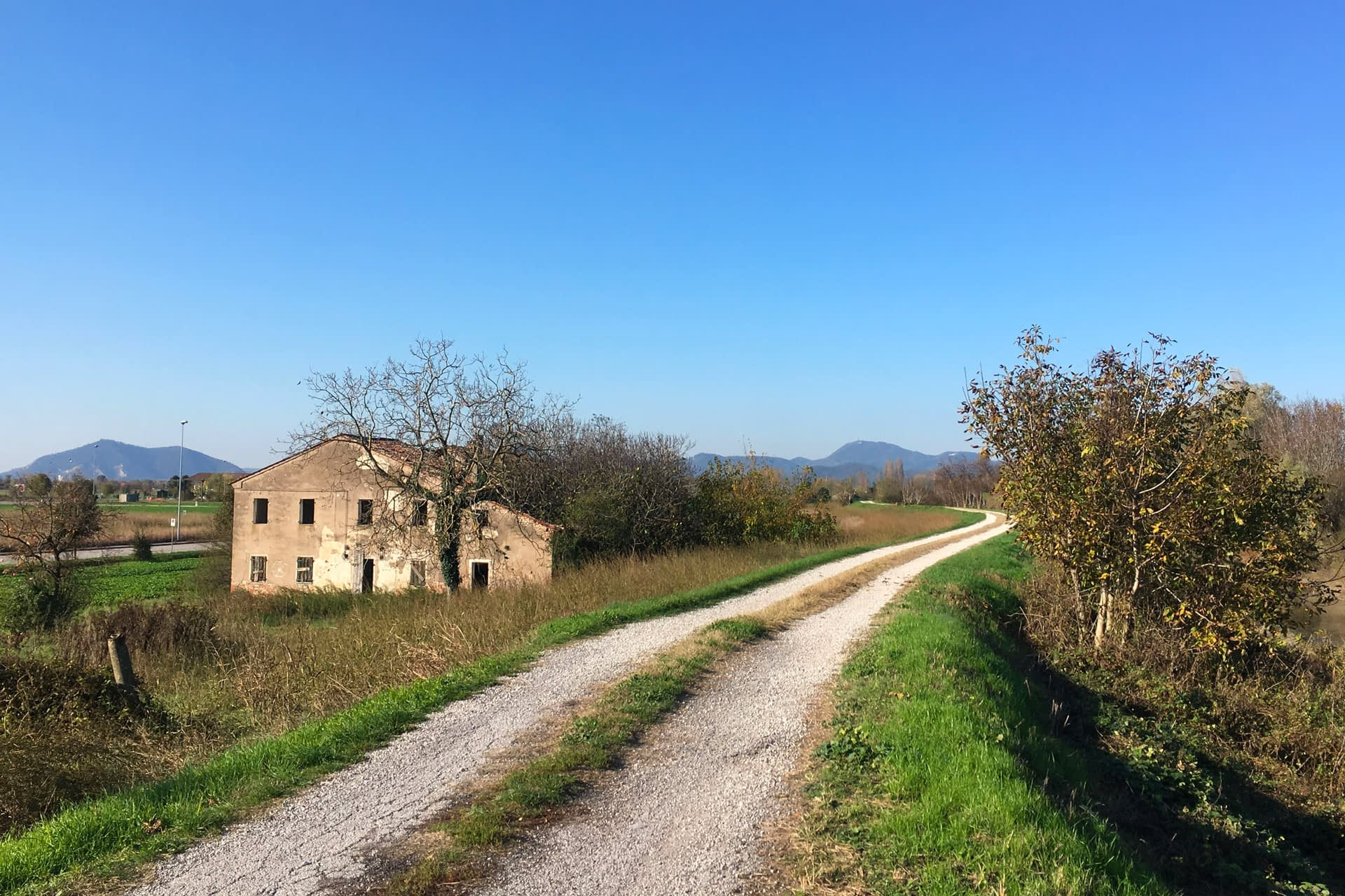 Cartura_Stradina di campagna con Colli Euganei sullo sfondo